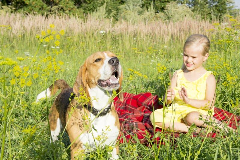 Niña con un perro foto de archivo