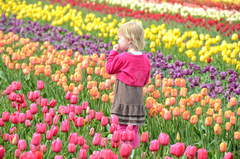 Niña en campo del tulipán fotos de archivo libres de regalías