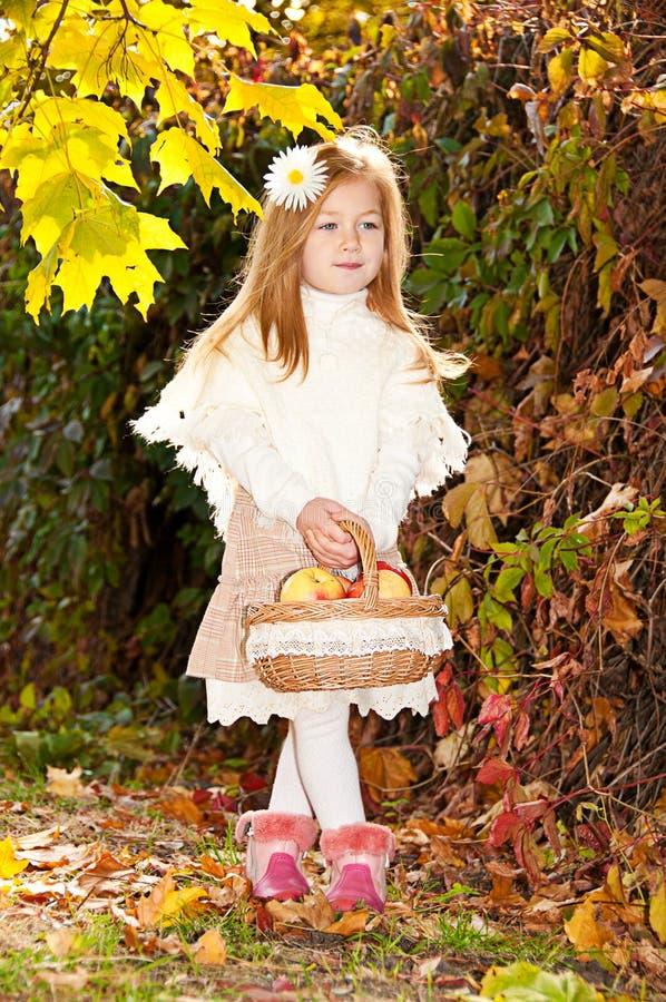 Niña hermosa con la cesta de manzanas maduras foto de archivo libre de regalías