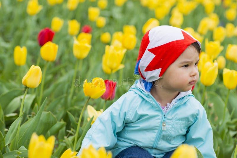 Niña hermosa en un campo de tulipanes coloreados imagen de archivo