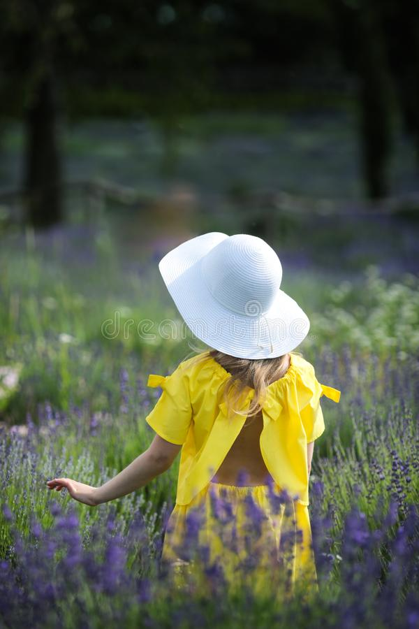 Niña hermosa en un vestido amarillo y un sombrero blanco que camina en un campo de la lavanda fotografía de archivo