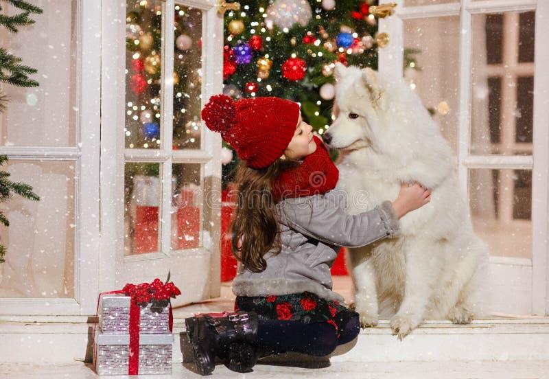 Niña hermosa que abraza un perro blanco grande en stree de la Navidad imágenes de archivo libres de regalías