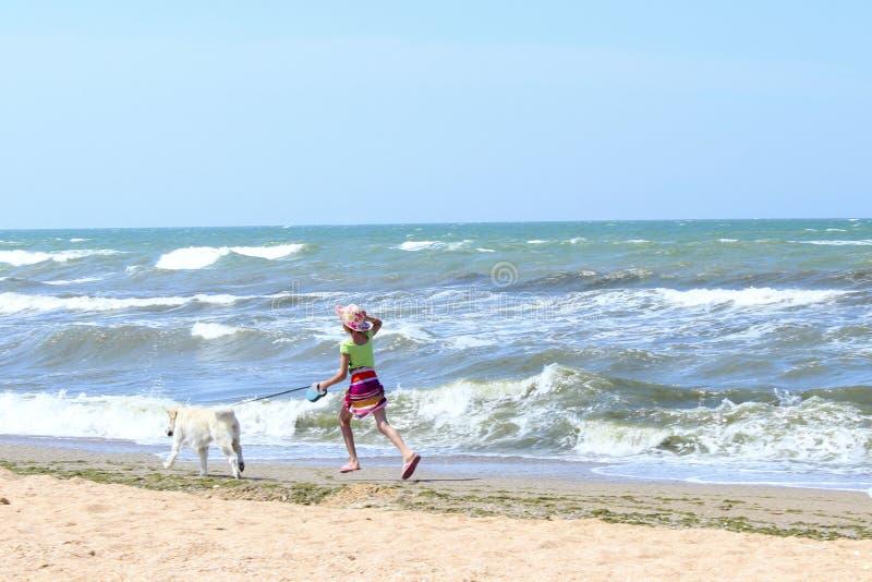 Niña joven y perro del golden retriever que corre en la playa Aire libre del perro y del dueño fotos de archivo
