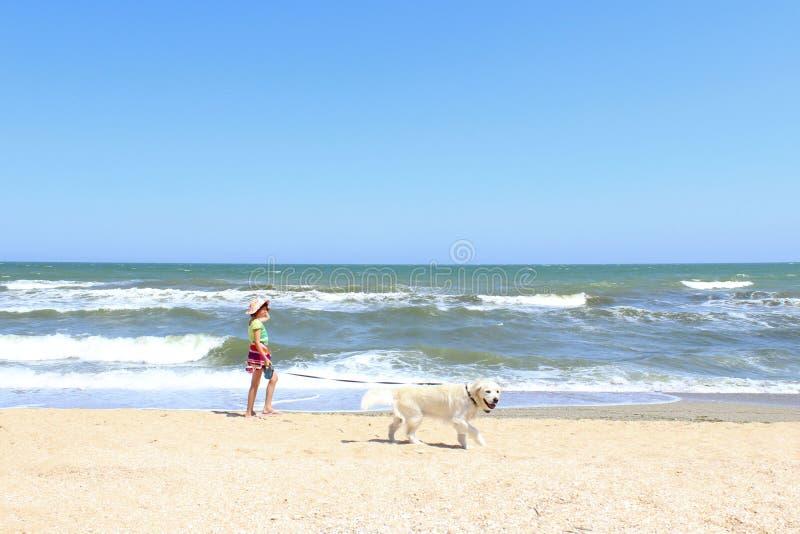 Niña joven y perro del golden retriever que corre en la playa Aire libre del perro y del dueño imagenes de archivo