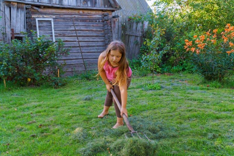 Niña linda con la siega de la manera tradicional de la hierba con la guadaña fotografía de archivo libre de regalías