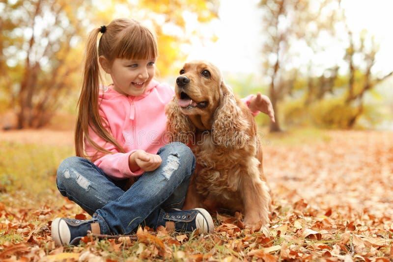Niña linda con su animal doméstico en parque imagen de archivo