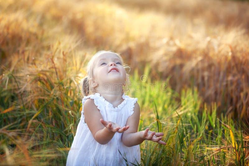 Niña linda en el vestido blanco en el campo del centeno en día de verano imagenes de archivo