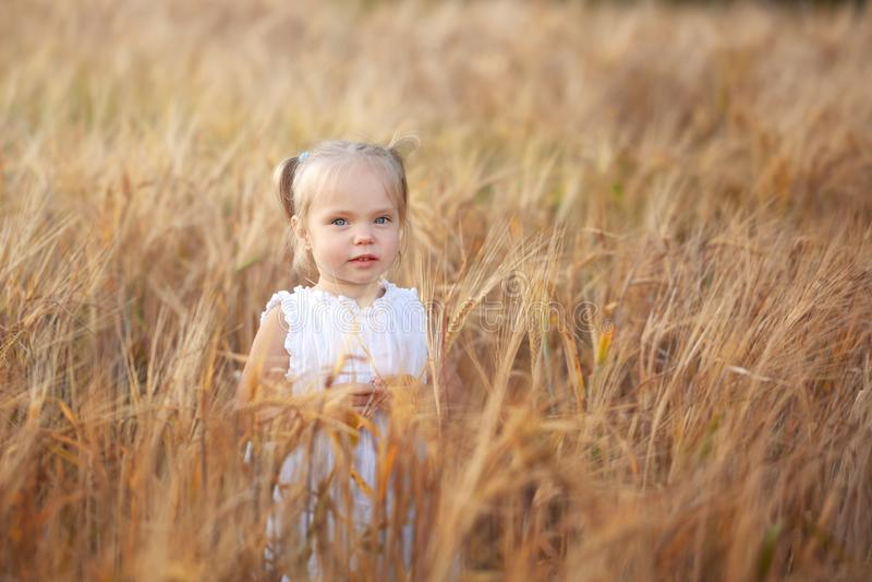 Niña linda en el vestido blanco en el campo del centeno en día de verano fotos de archivo libres de regalías