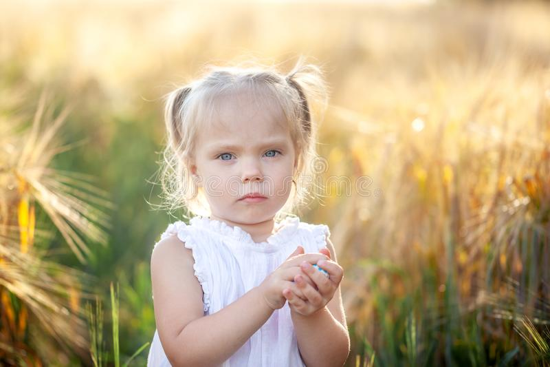 Niña linda en el vestido blanco en el campo del centeno en día de verano imagen de archivo