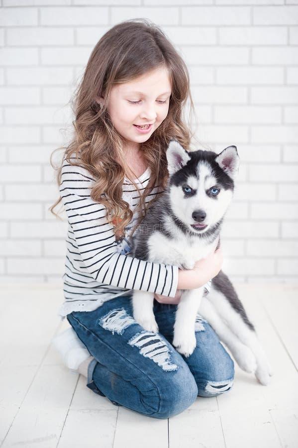 Niña linda que abraza el perrito fornido en un fondo blanco fotos de archivo