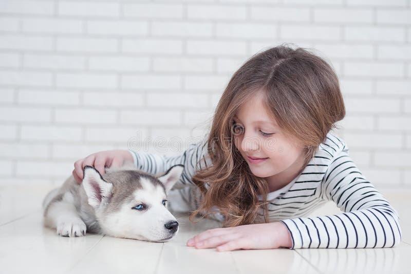 Niña linda que abraza el perrito fornido en un fondo blanco foto de archivo libre de regalías