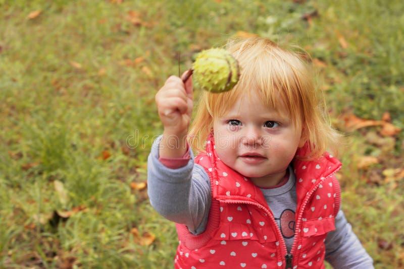 Niña pequeña adorable con la castaña de la tenencia del pelo rubio; fondo del otoño fotos de archivo