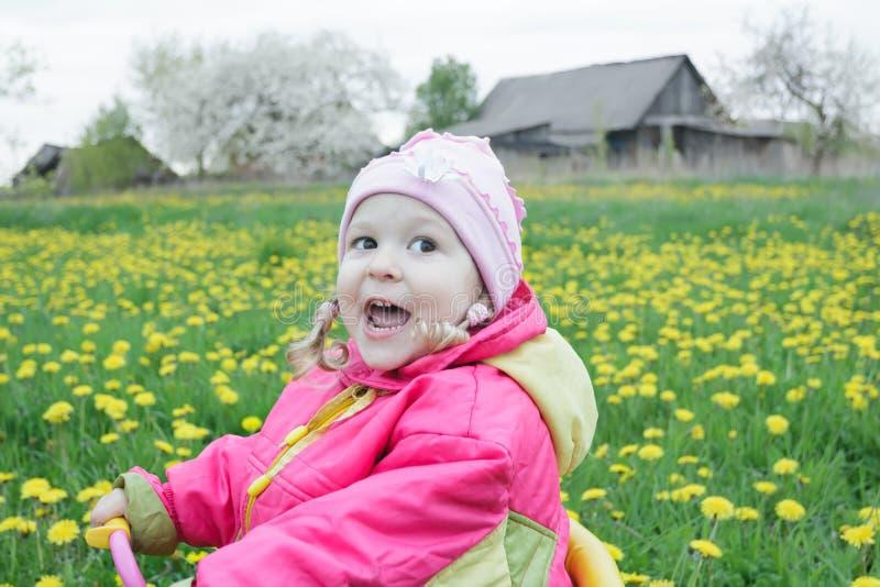 Niña pequeña adorable que conduce el triciclo rosado y amarillo a través del prado floreciente de los dientes de león de la prima imagen de archivo