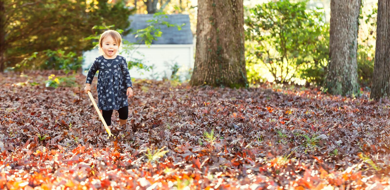 Niña pequeña feliz que rastrilla las hojas fotografía de archivo