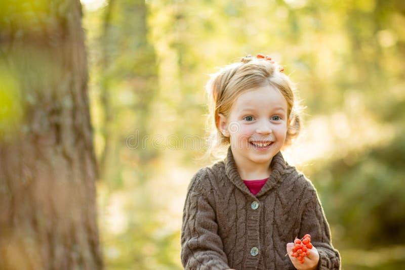Niña pequeña linda que lleva el suéter hecho punto, sosteniendo la sorba hojas de la caída, del rojo y del amarillo muchacha lind fotografía de archivo