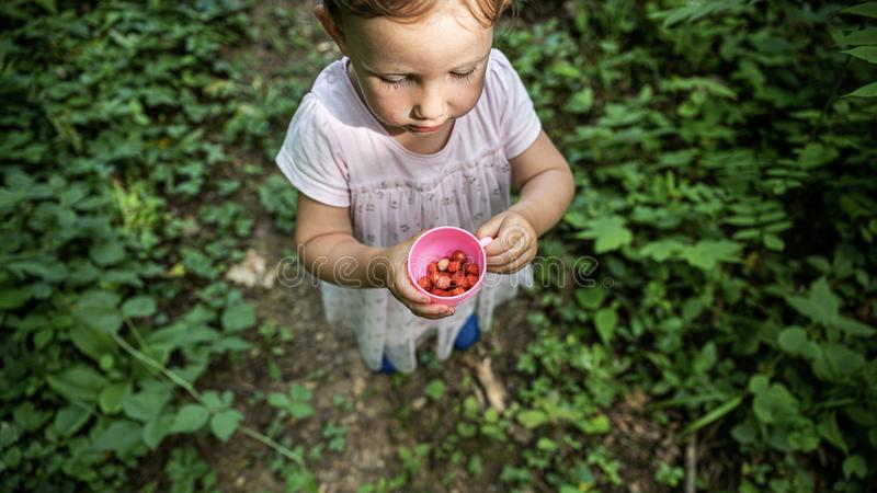 Niña pequeña que sostiene una taza con las fresas salvajes que se colocan en el sendero foto de archivo libre de regalías