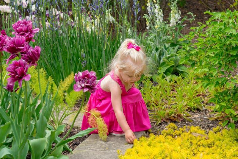 Niña que explora un jardín sensorial en primavera fotografía de archivo libre de regalías