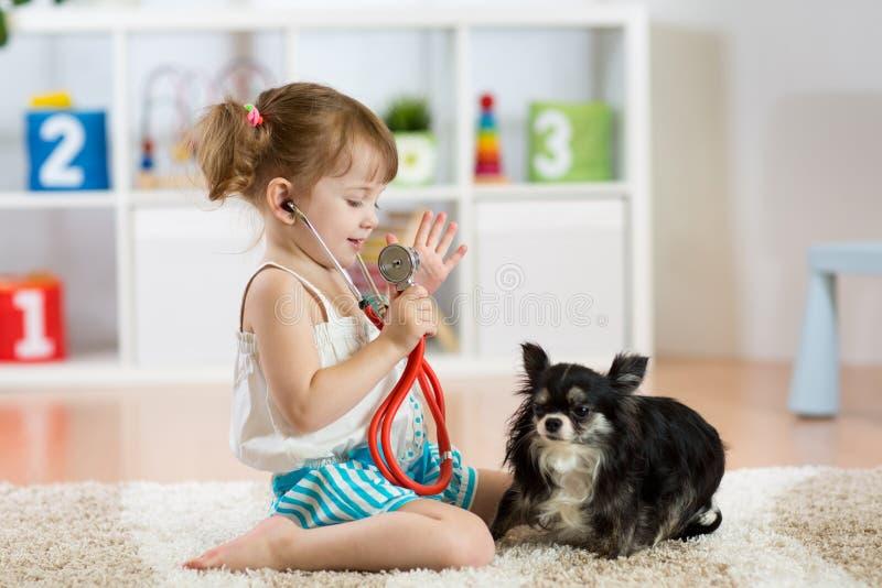 Niña que juega al doctor con su pequeño perro lindo en la sala de estar imagen de archivo libre de regalías