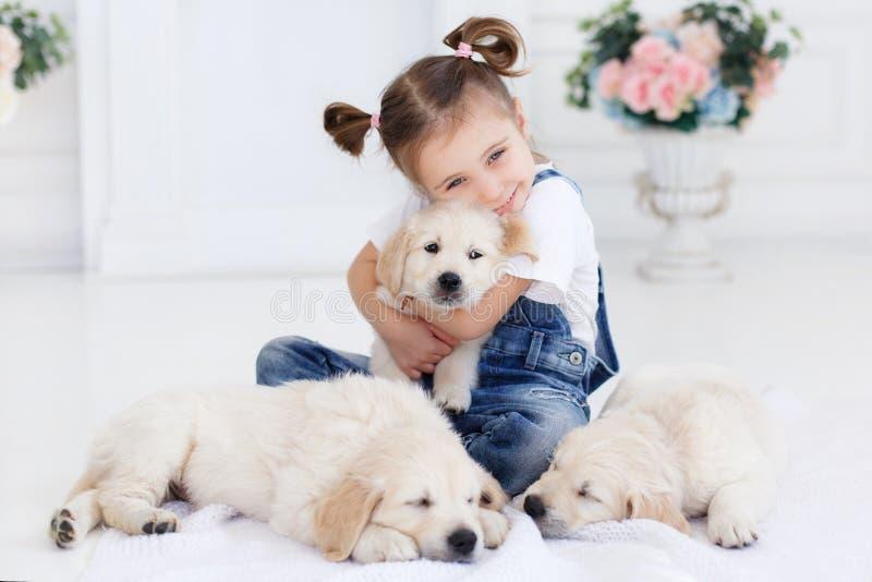 Niña que juega con el perro perdiguero de los perritos foto de archivo libre de regalías