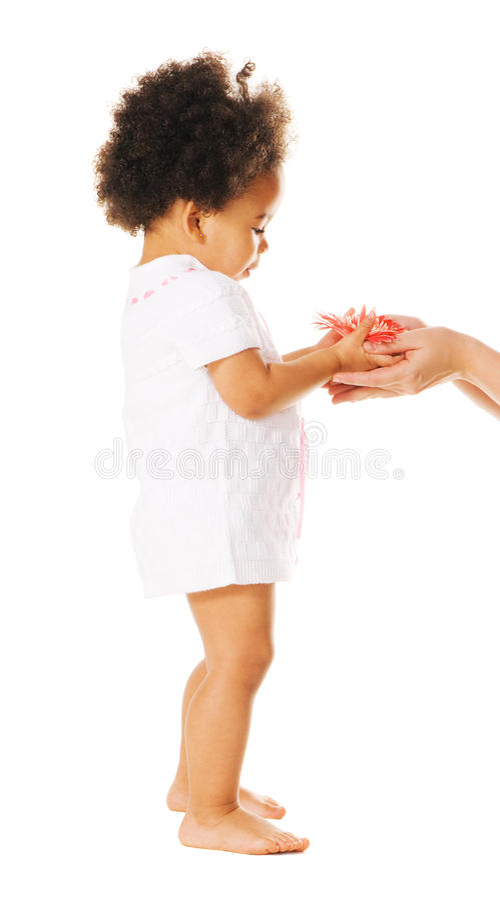 Niña que toma una flor de la mujer \ de 's ha fotografía de archivo libre de regalías