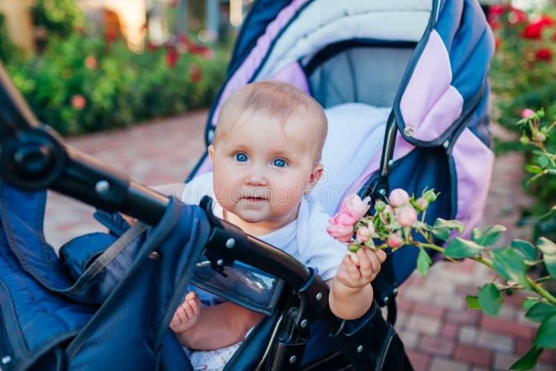 Niña sentada en carros y tocando rosas en el jardín. Feliz bebé explorando el mundo de la naturaleza al aire libre. Curiosidad fotografía de archivo