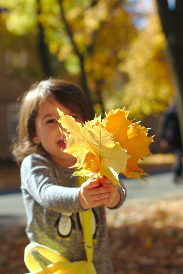 Niña sonriente hermosa en parque del otoño fotografía de archivo libre de regalías