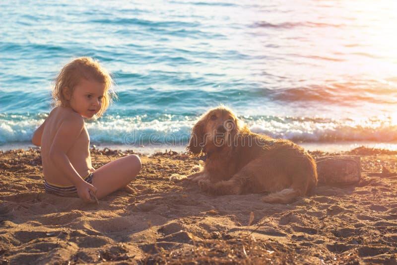 Niña y cocker spaniel de oro en la playa imagen de archivo libre de regalías