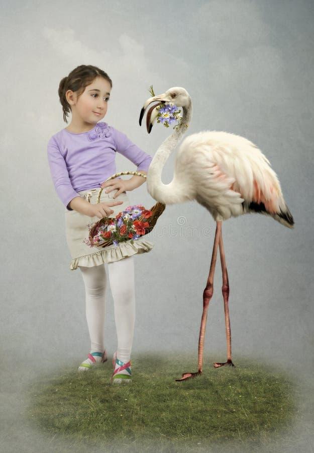 Niña y flamencos foto de archivo