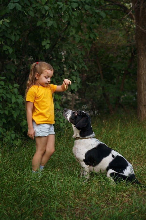 Niña y perro mestizo al aire libre foto de archivo