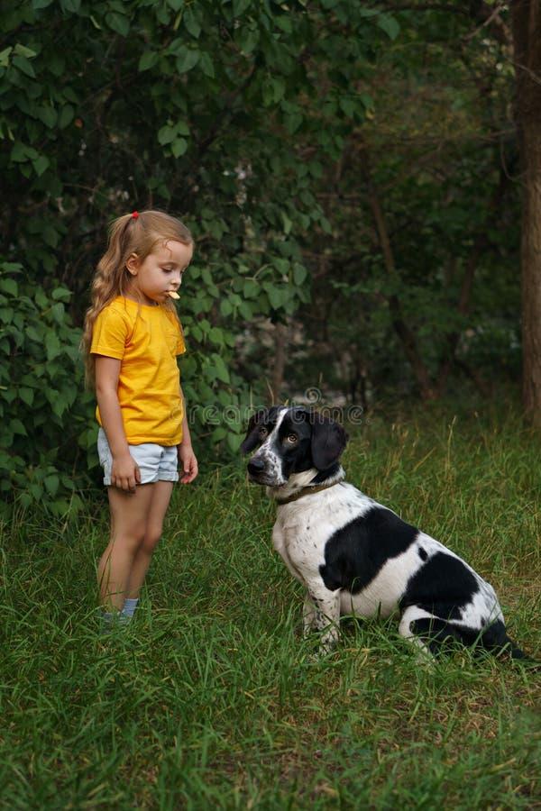 Niña y perro mestizo al aire libre fotografía de archivo
