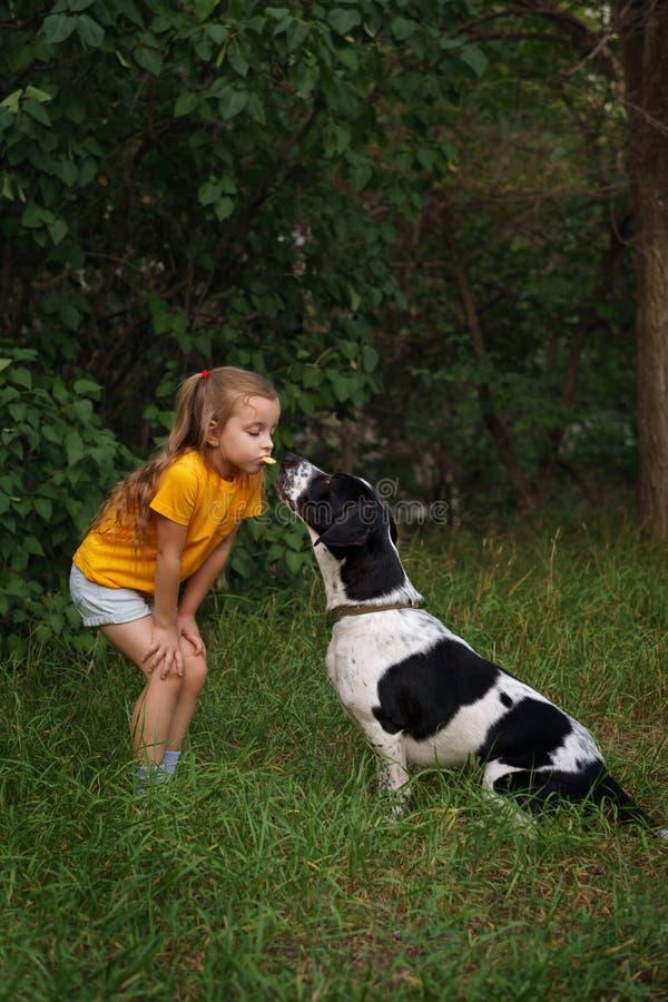Niña y perro mestizo al aire libre fotografía de archivo libre de regalías