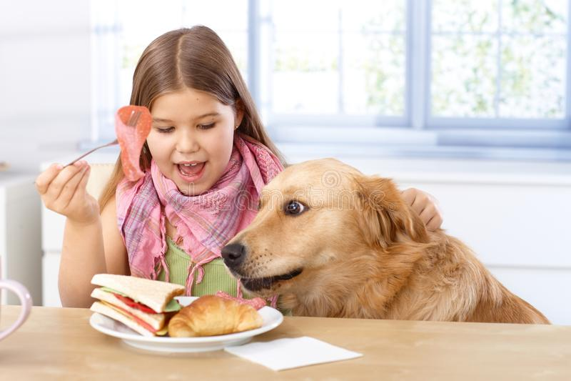 Niña y perro que desayunan junto fotografía de archivo libre de regalías