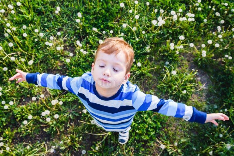 Niñez del muchacho de la hierba del campo del niño lindo imagen de archivo libre de regalías