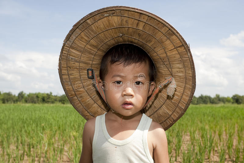Niño asiático del retrato en el campo de arroz fotografía de archivo
