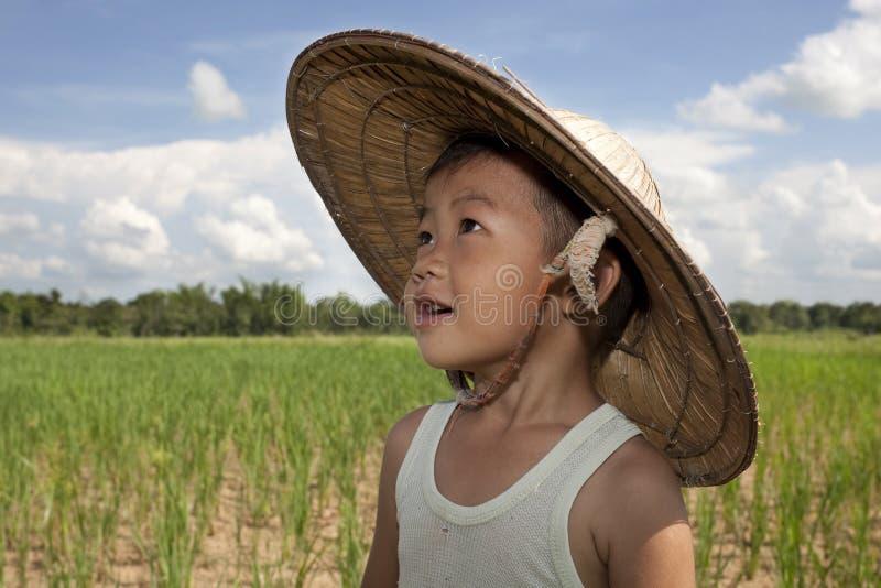 Niño asiático del retrato en el campo de arroz imagen de archivo libre de regalías
