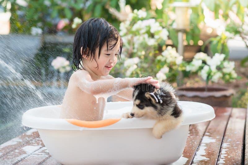 Niño asiático lindo que se baña con el perrito del husky siberiano foto de archivo