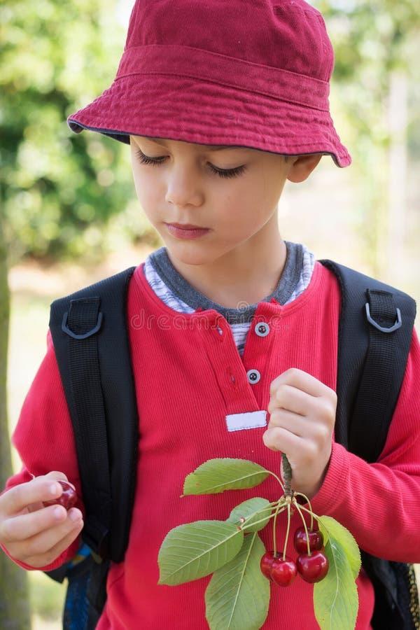 Niño con el franch de la fruta de la cereza fotografía de archivo