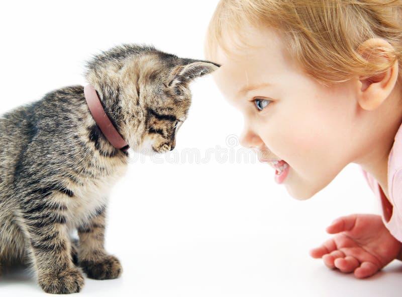 Niño con el retrato del animal doméstico en el fondo blanco Ni?o y gatito imagen de archivo