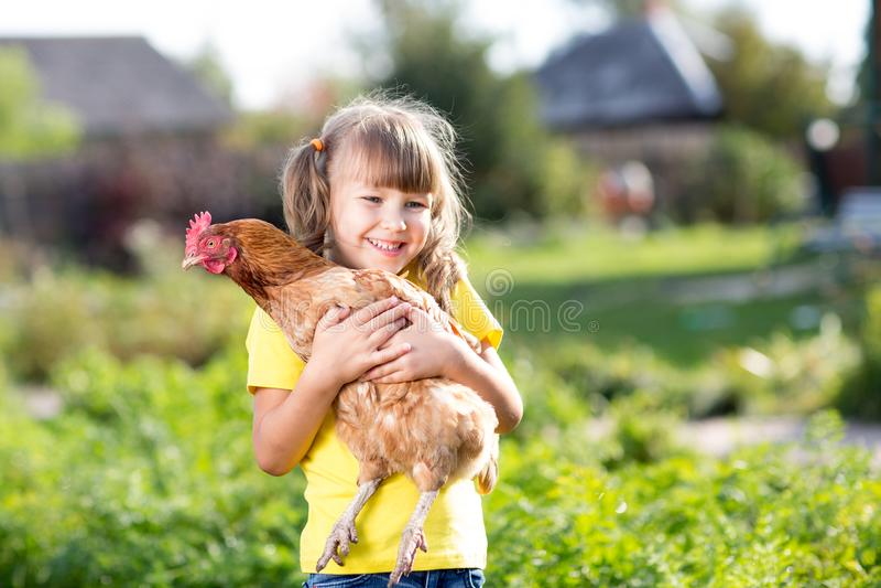 Niño con la gallina en manos en rural foto de archivo