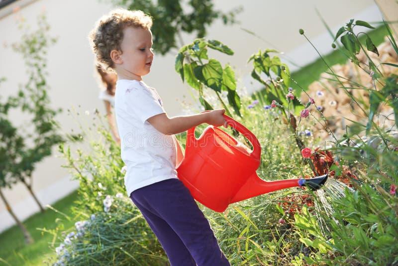 Niño con la regadera en cultivar un huerto imagen de archivo libre de regalías