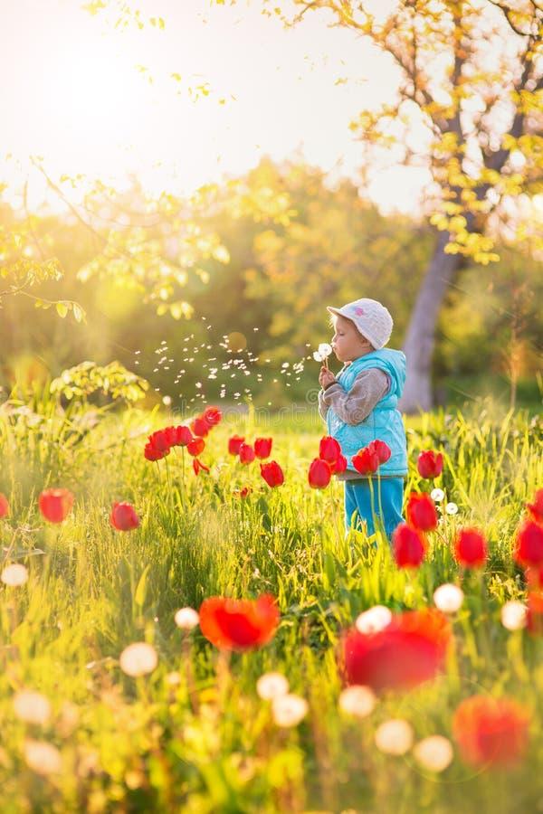 Niño de la niña en un campo con la hierba verde y el tulipán floreciente imagen de archivo libre de regalías