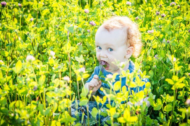Niño del niño en un prado salvaje imagen de archivo