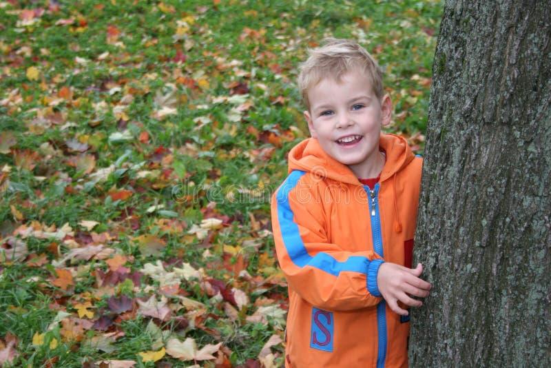 Niño del otoño foto de archivo libre de regalías