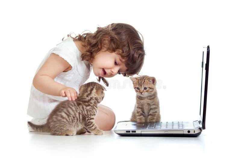 Niño divertido que usa una computadora portátil y gatitos imagenes de archivo