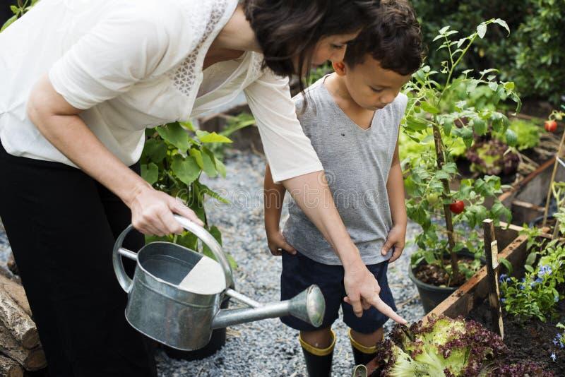 Niño en el jardín que riega las plantas imagenes de archivo
