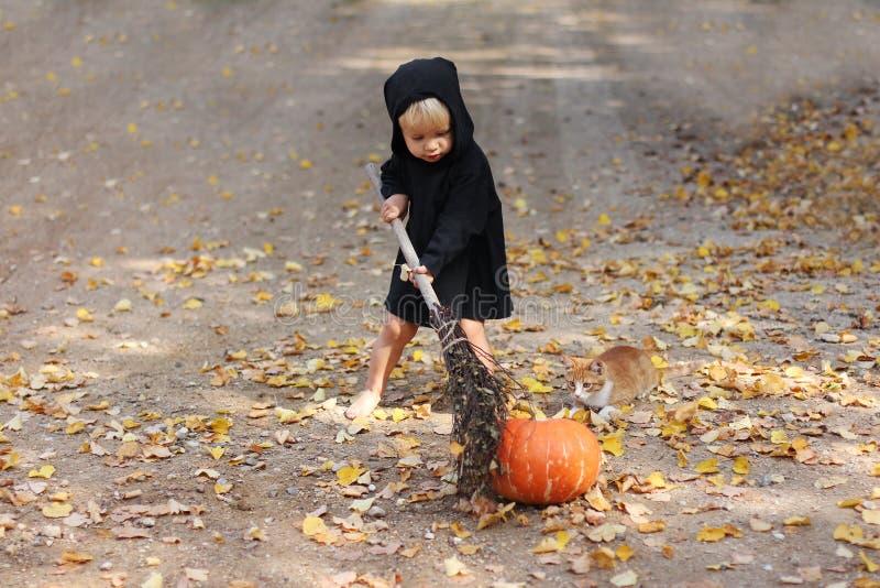 Niño en hechicero de Halloween o vestido de bruja de pie con escoba cerca de calabaza fresca, lo toca con besom, ginger gatito ce imagenes de archivo
