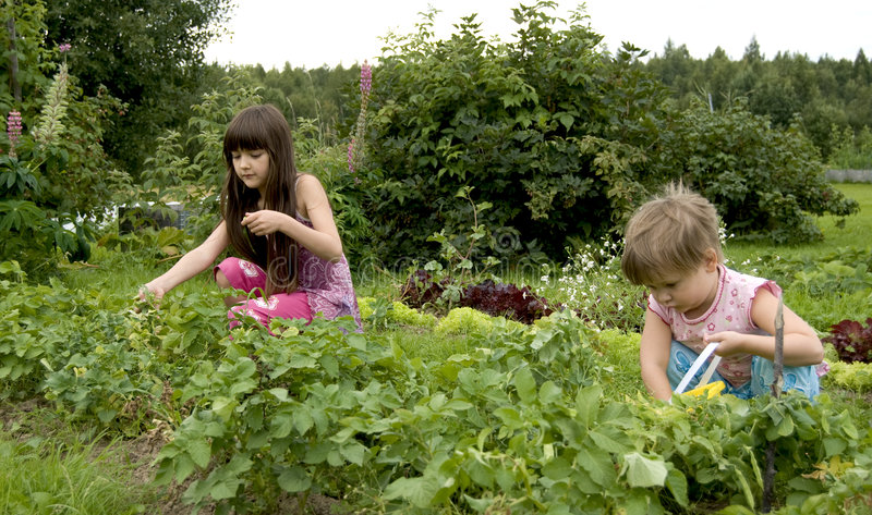 Niño en jardín de cocina fotos de archivo libres de regalías