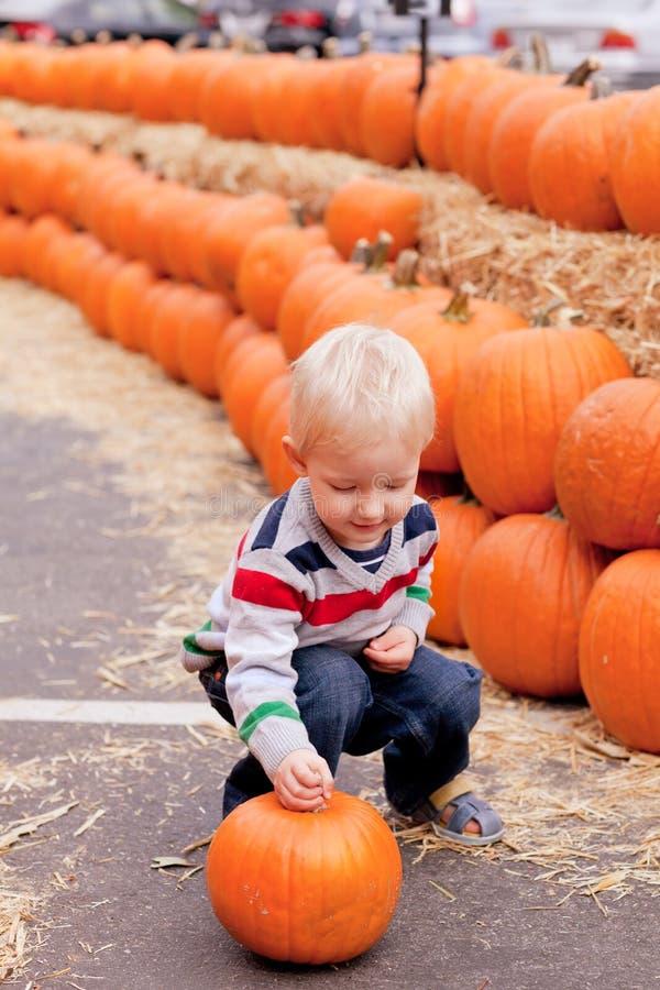 Niño en la corrección de la calabaza fotografía de archivo