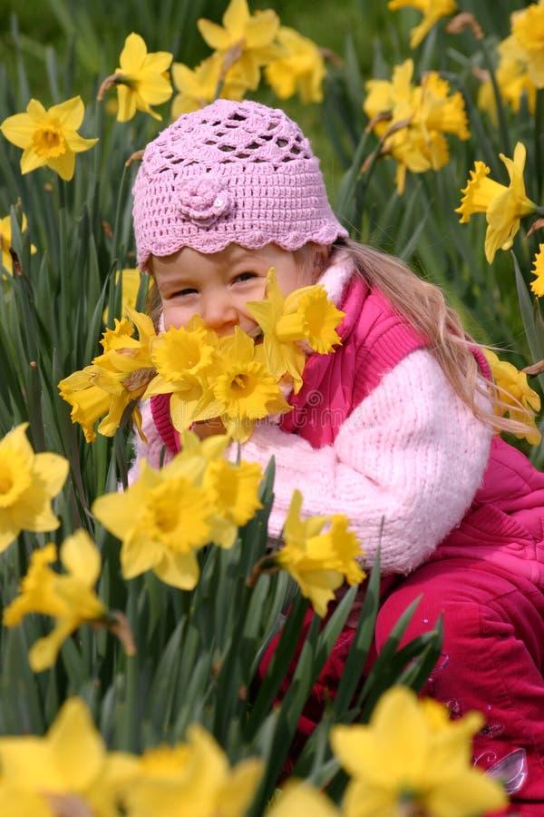 Niño en narcisos amarillos foto de archivo