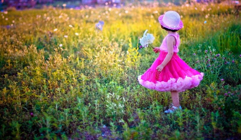Niño en un campo de flor imagenes de archivo
